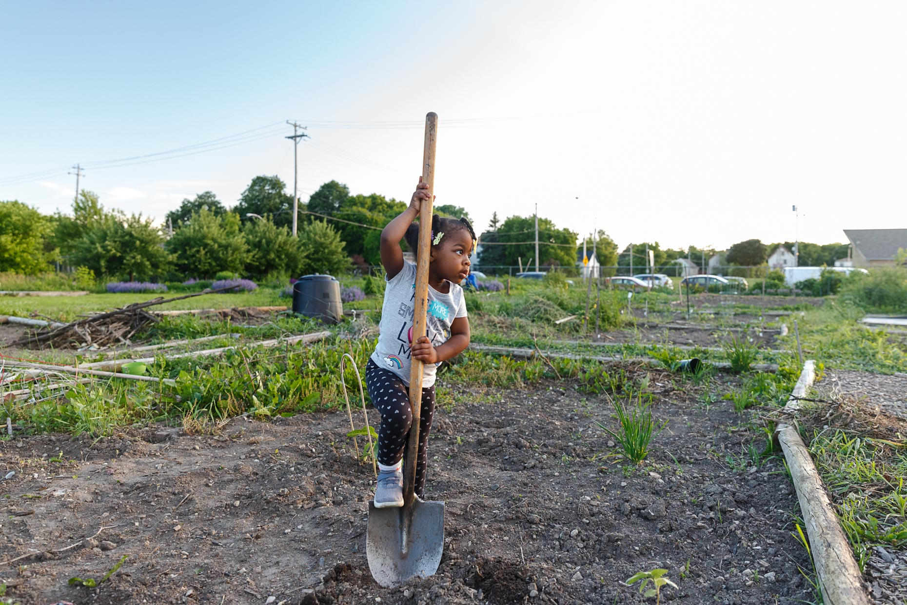 Zoe Scholle-Malone, age 3, gets some work done in the family garden plot.