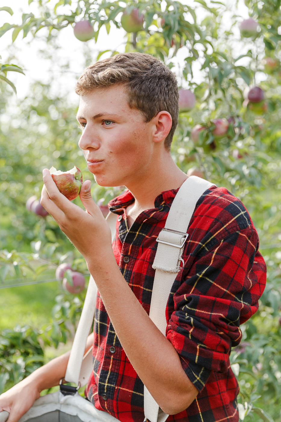 Charlie Fahey samples an organic apple while picking apples in their family run orchard, Peck and Bushel, in Colgate, WI.